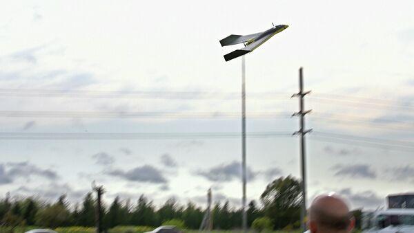 Un dron argentino - Sputnik Mundo