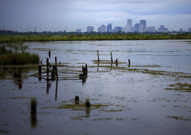 Alrededores de Nueva Orleans