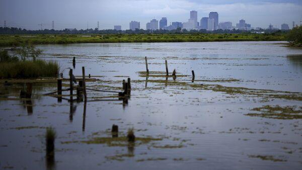 Alrededores de Nueva Orleans - Sputnik Mundo