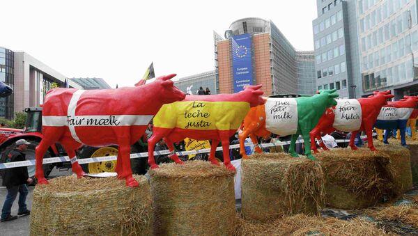 Protesta de granjeros europeos en Bruselas, Bélgica, el 7 de septiembre, 2015 - Sputnik Mundo