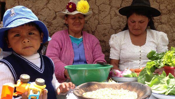 Redistribución de la riqueza es el mayor logro social de Bolivia - Sputnik Mundo