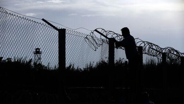 Construcción de una valla fronteriza entre Hungría y Serbia - Sputnik Mundo