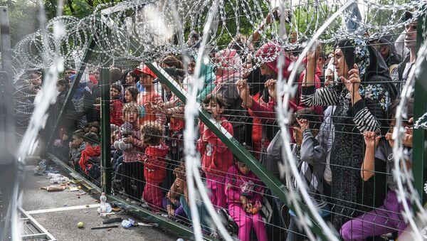 Refugiados detrás de una valla en la frontera entre Serbia y Hungría - Sputnik Mundo