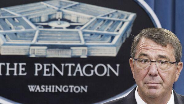 Ashton Carter, secretario de Defensa de EEUU - Sputnik Mundo