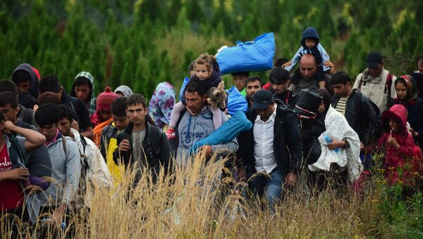 Migrants make their way through the countryside after they crossed the boarder near the village of Zakany in Hungary to continue their trip to Gemany on September 20, 2015. - Sputnik Mundo