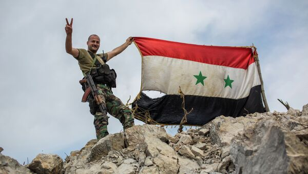 A government soldier with the Syrian flag on a location on top of a hill not far from Kessab on the Turkish border following an Islamist takeover of the town - Sputnik Mundo