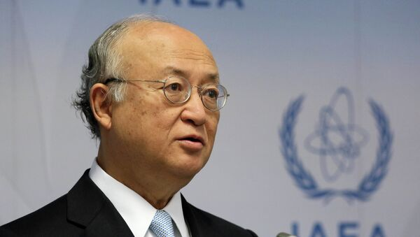 Director General of the International Atomic Energy Agency, IAEA, Yukiya Amano of Japan speaks during a news conference after a meeting of the IAEA board of governors at the International Center in Vienna, Austria - Sputnik Mundo