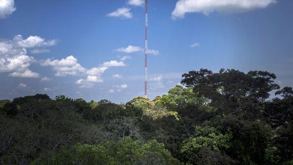 Observatorio de Torre Alta de Amazonía, Brasil (archivo) - Sputnik Mundo