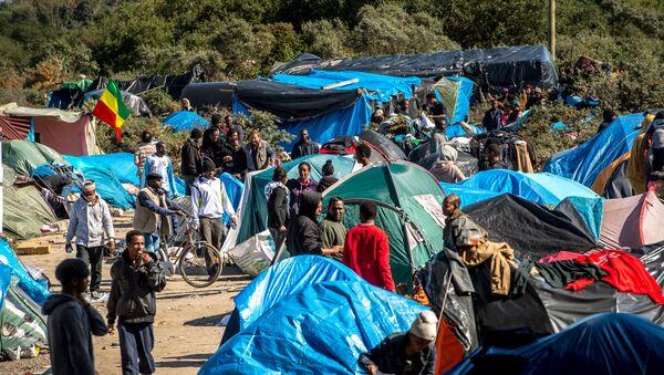 Migrantes están viviendo en lugar llamado Nueva Jungla en Canais, France - Sputnik Mundo