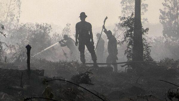 Policía de Indonesia durante los incendios forestrales en Kampar - Sputnik Mundo