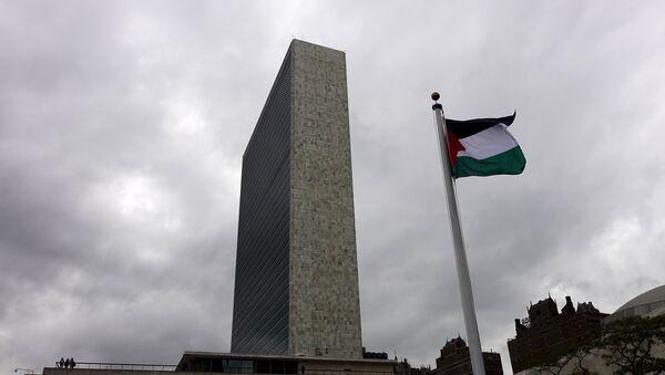 Bandera de Palestina en la sede de la Organización de Naciones Unidas en Nueva York - Sputnik Mundo