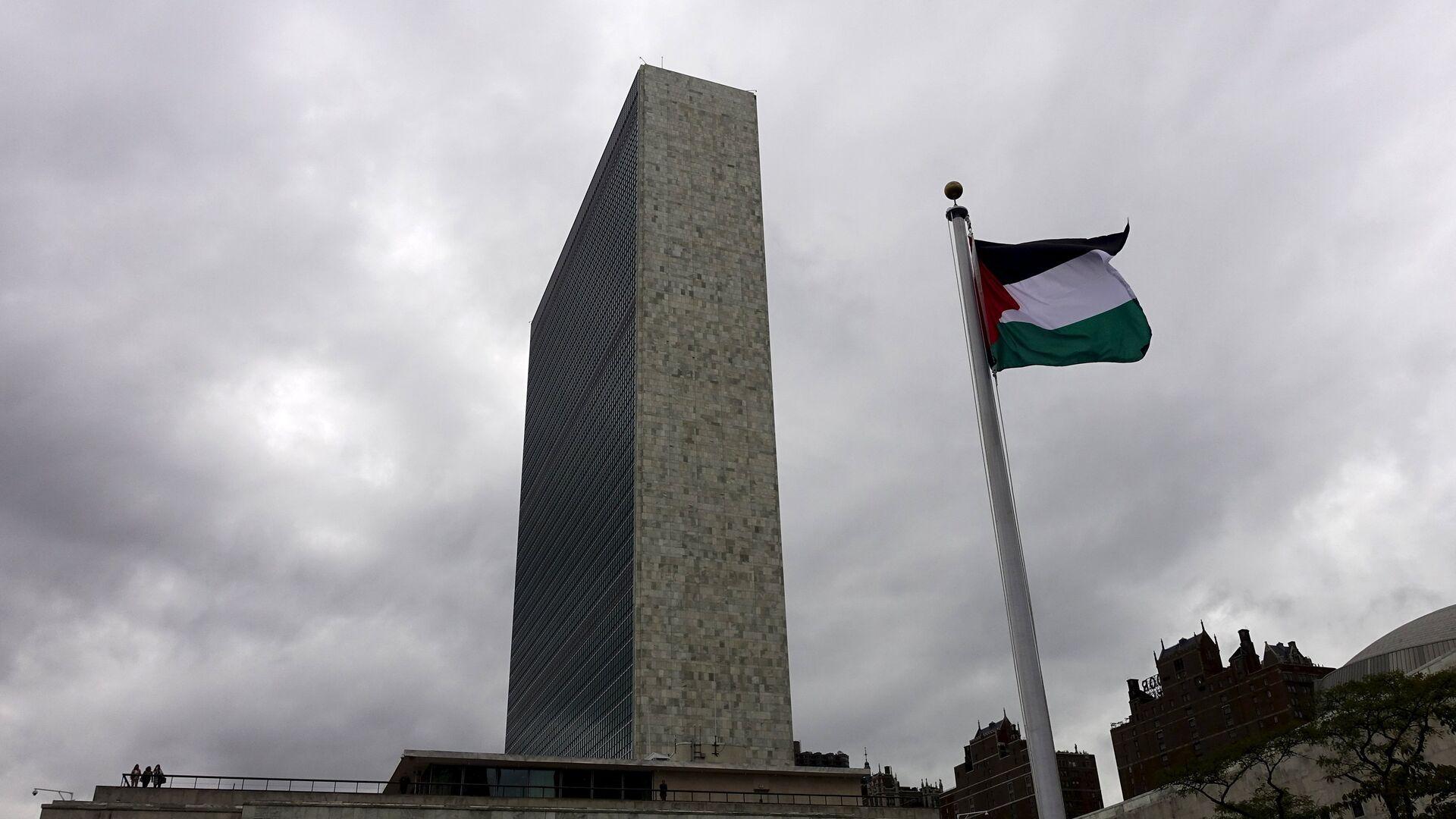 Bandera de Palestina - Sputnik Mundo, 1920, 14.05.2021