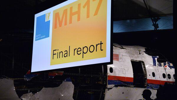 Informe técnico definitivo de la catástrofe del MH17 - Sputnik Mundo
