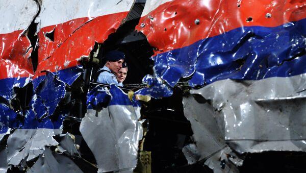Restos del avión MH17 siniestrado en el este de Ucrania - Sputnik Mundo