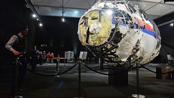 Informe técnico de la catástrofe del MH17 (archivo) - Sputnik Mundo