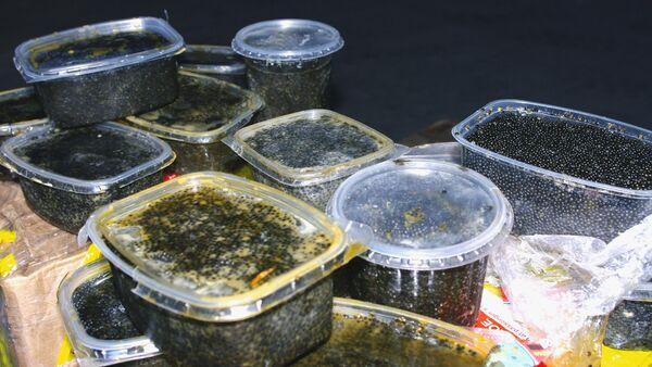 Caviar negro confiscado (archivo) - Sputnik Mundo