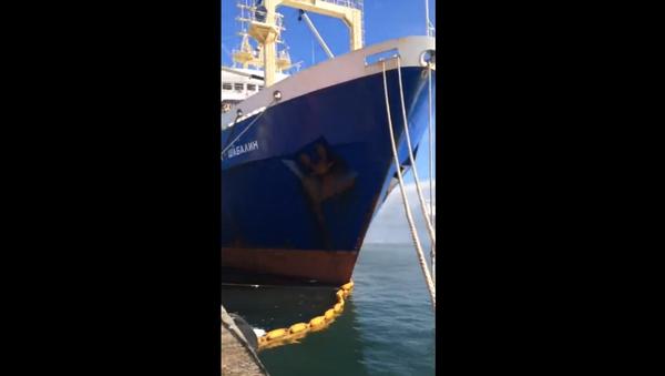 Incendio del pesquero ruso Admiral Shabalin - Sputnik Mundo