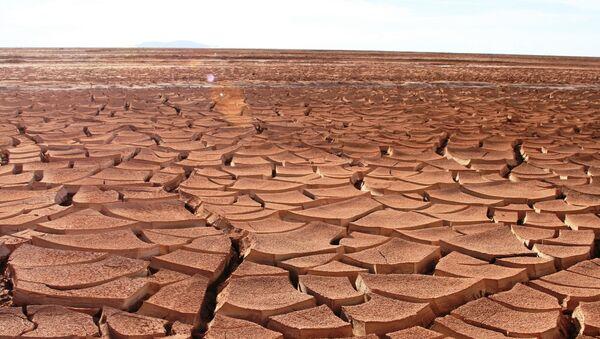 Sequía - Sputnik Mundo