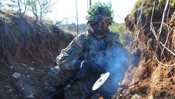 Militar de la OTAN en Estonia - Sputnik Mundo