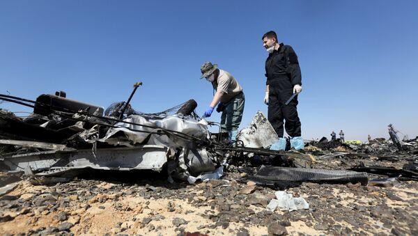 Investigadores rusos examinan los restos del avión ruso Airbus-321 siniestrado en Egipto - Sputnik Mundo
