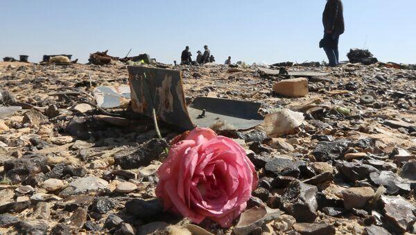Flor en los restos del avión ruso Airbus-321 siniestrado en Egipto - Sputnik Mundo