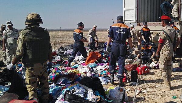 Rescatistas en el lugar del siniestro del Airbus A321 en Egipto - Sputnik Mundo