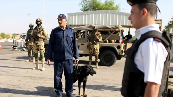 Policía inspecciona la seguridad en el aeropuerto de Sharm el Sheikh - Sputnik Mundo