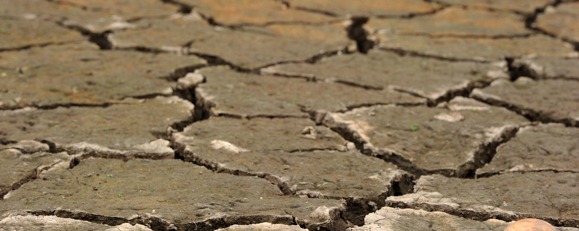 Sequía en Honduras como consecuencia de El Niño - Sputnik Mundo, 1920, 03.08.2021
