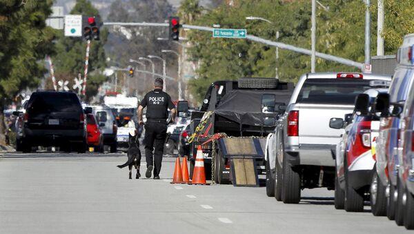 Policía de San Bernardino (archivo) - Sputnik Mundo