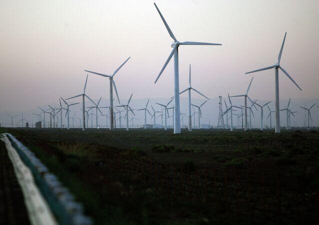 Planta de la energía eólica