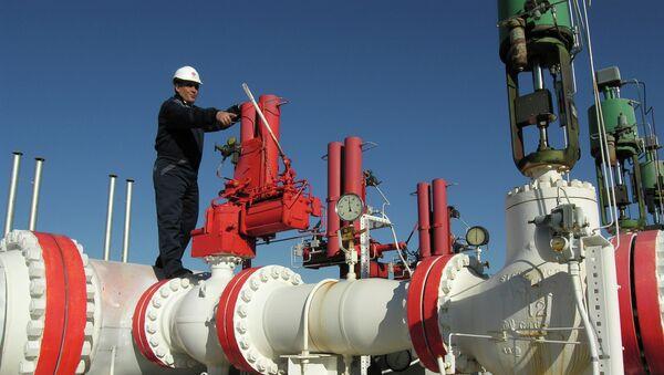 Un trabajador de la empresa gasística turca BOTAS - Sputnik Mundo