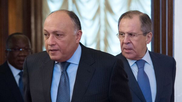 El ministro egipcio de Exteriores, Sameh Shoukry, y el canciller ruso, Serguéi Lavrov (archivo) - Sputnik Mundo
