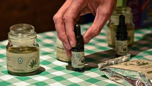 Productos del cannabis a medida para uso terapéutico - Sputnik Mundo