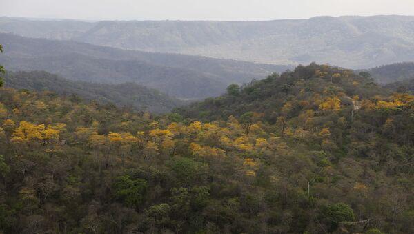 Bosque seco, Ecuador - Sputnik Mundo