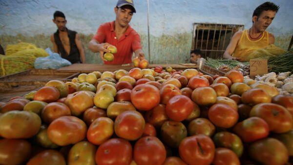 Un cubano vende tomatos en un mercado en el centro de La Habana - Sputnik Mundo
