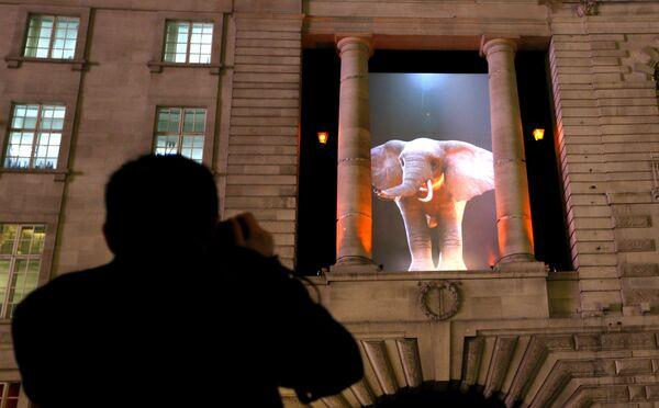 """Festival de luces """"Lumiere"""" en Londres - Sputnik Mundo"""
