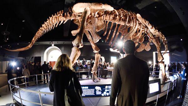 El titanosaurio argentino que revoluciona Nueva York - Sputnik Mundo