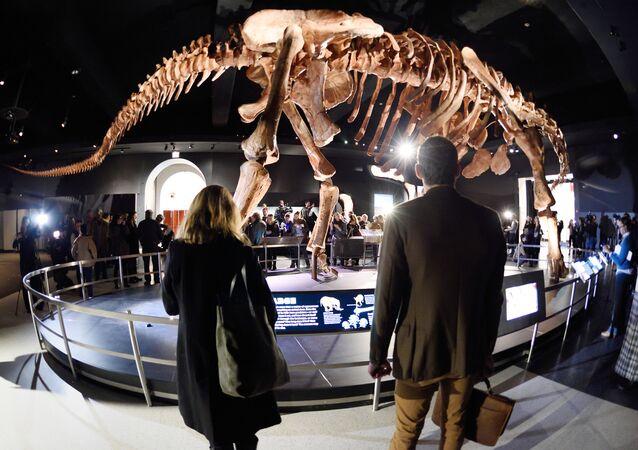 El titanosaurio argentino que revoluciona Nueva York