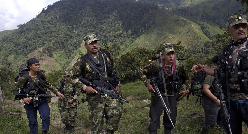 Combatientes de las FARC