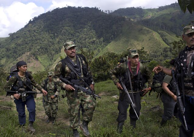 Combatientes de las FARC (archivo)