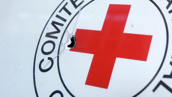 A bullet hole is seen on a sign, on a Red Cross office after shelling, in the town of Donetsk, eastern Ukraine - Sputnik Mundo