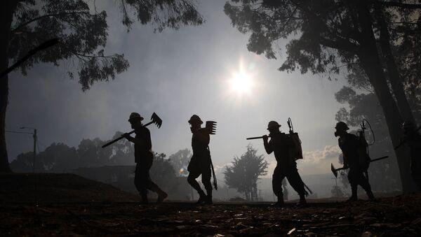 Soldados ayudan a controlar un incendio forestal, Bogotá - Sputnik Mundo