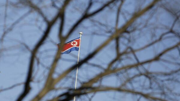 Bandera de Corea del Norte - Sputnik Mundo