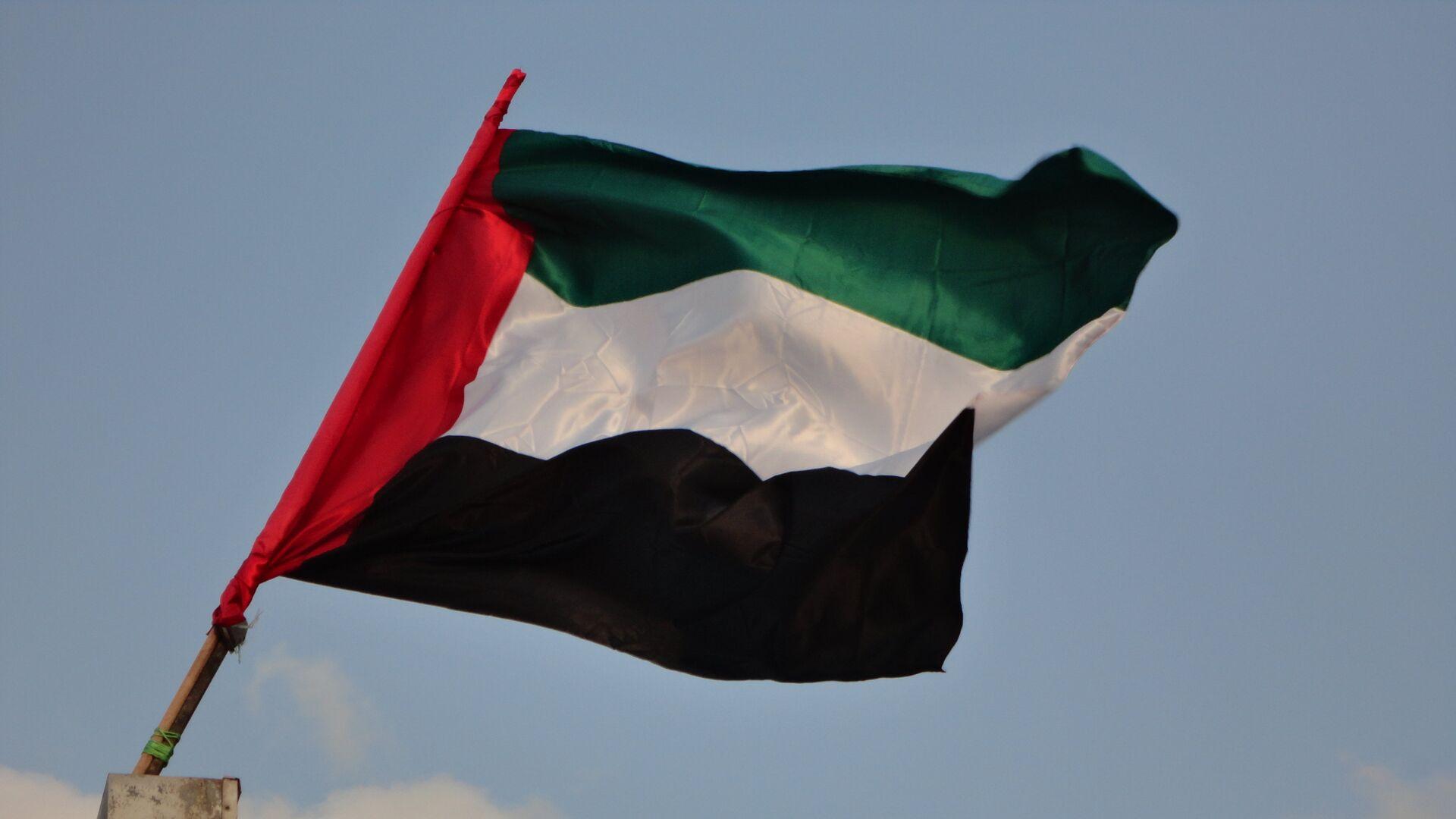 La bandera de Emiratos Árabes Unidos - Sputnik Mundo, 1920, 09.03.2021