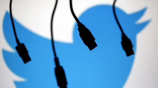 Electronic cables are silhouetted next to the logo of Twitter in this illustration photo in Sarajevo - Sputnik Mundo
