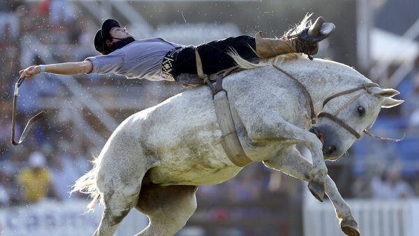 Rodeo en Montevideo: La competencia de los gauchos más valientes - Sputnik Mundo
