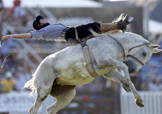 Rodeo en Montevideo: La competencia de los gauchos más valientes
