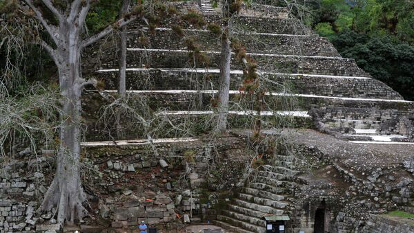 Picture taken at the Mayan archaeological site of Copan, 400 km from Tegucigalpa in western Honduras, near the border with Guatemala, on December 7, 2015 - Sputnik Mundo