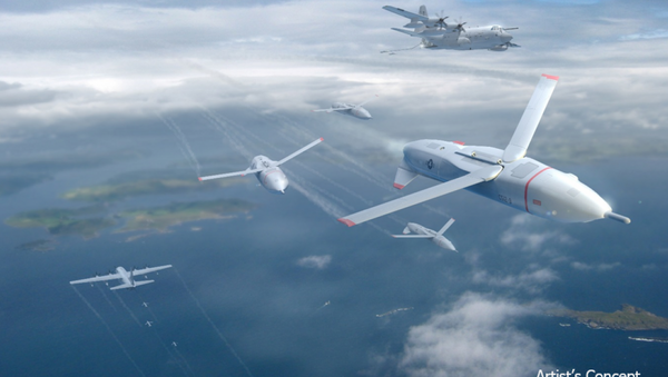 La aviación de EEUU prevé siete millones de drones para 2020 - Sputnik Mundo