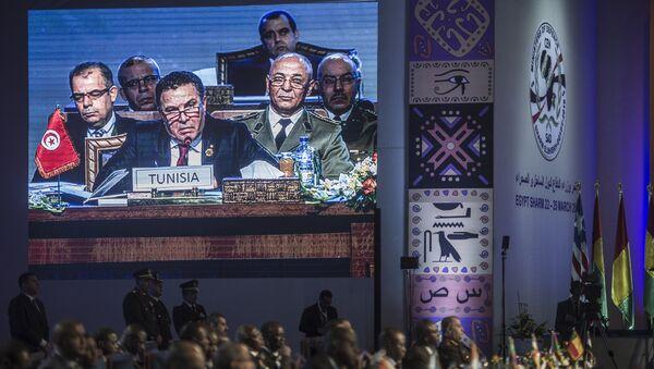 Reunión de los ministros de Defensa de la CEN-SAD en Egipto - Sputnik Mundo